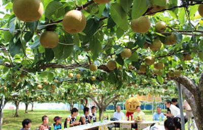 0731freshfruits.jpg