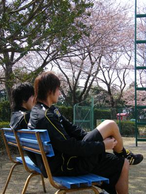 080327_bench.jpg