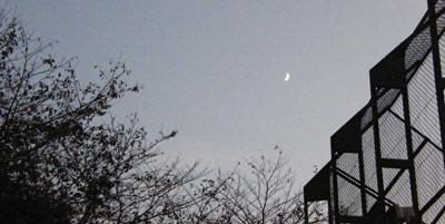 081104_moon.jpg