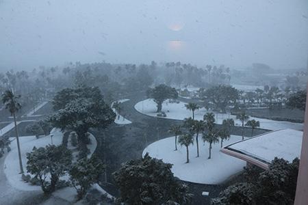 160124_snow.jpg
