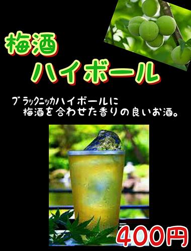 9-kaizoku-umehai.jpg